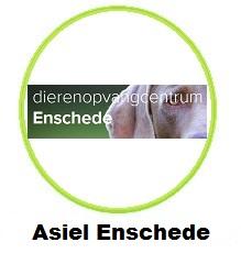 Asiel Enschede