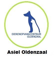 Asiel Oldenzaal