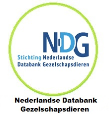 Nederlandse Databank Gezelschapsdieren