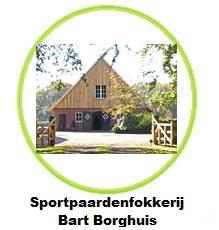 http://www.bartborghuis.nl/
