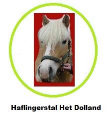 http://www.haflingerstalhetdolland.nl/